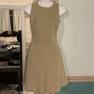 Loft fit/flare dress